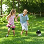 Brother and sister playing with their small puppy in their mosquito-free yard.